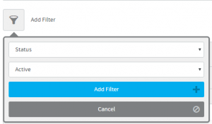 add-filter-active